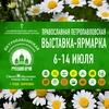 Русский край - 2019, 6 - 14 июля, г. Калининград